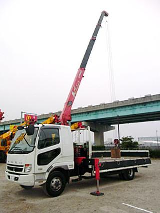Small_crane_photo1