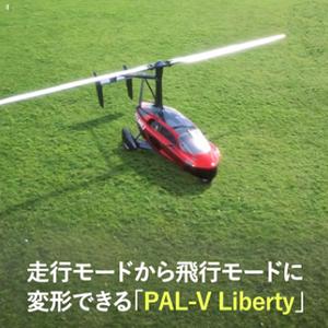 Palv12